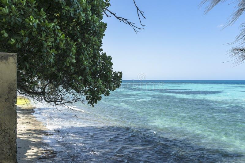 Costa da ilha da prisão foto de stock royalty free