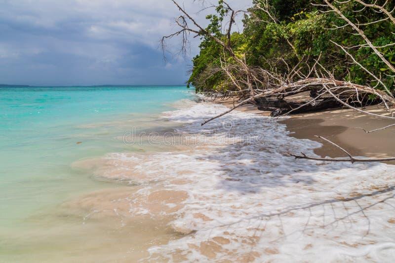 Costa da ilha de Isla Zapatilla, parte do arquipélago de Toro do del de Bocas, Pana imagens de stock royalty free