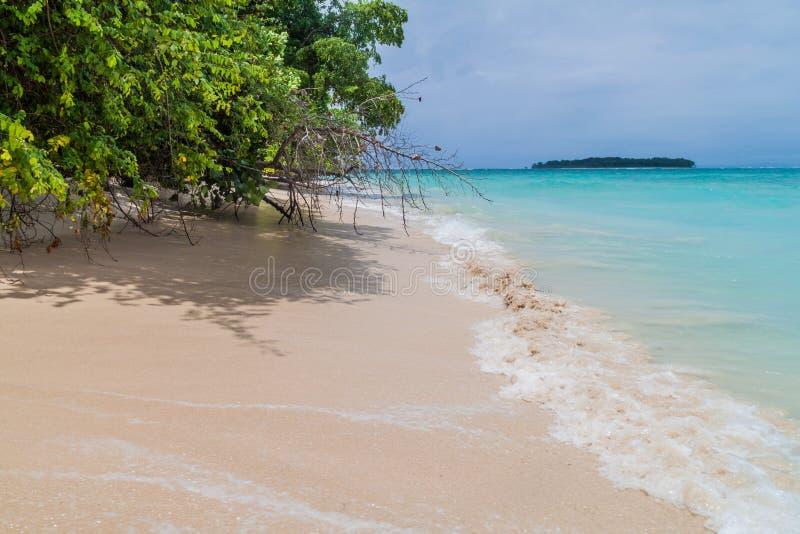Costa da ilha de Isla Zapatilla, parte do arquipélago de Toro do del de Bocas, Pana fotografia de stock royalty free