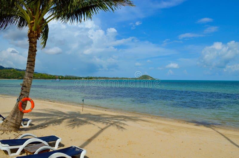 Costa da praia do paraíso nos trópicos fotografia de stock