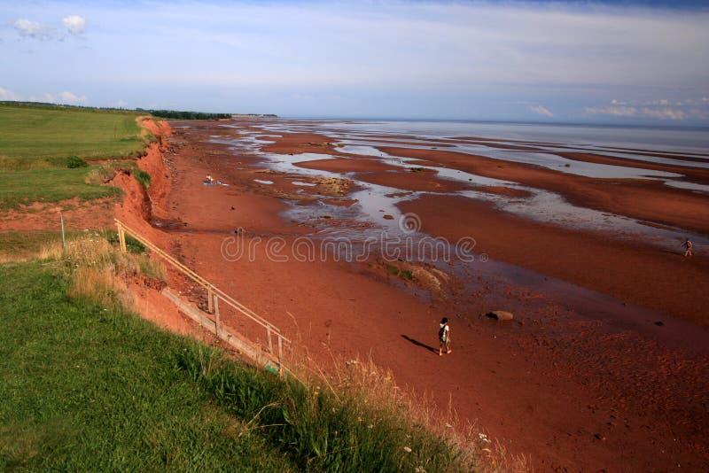 Costa de Argyle fotos de stock