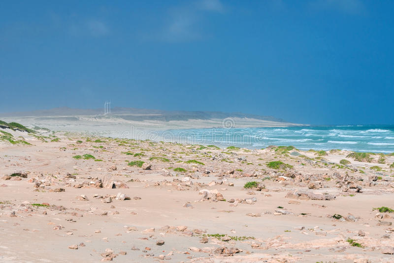Costa de Boa Esperanca with wind turbines - Boavista, Kapverden royalty free stock images