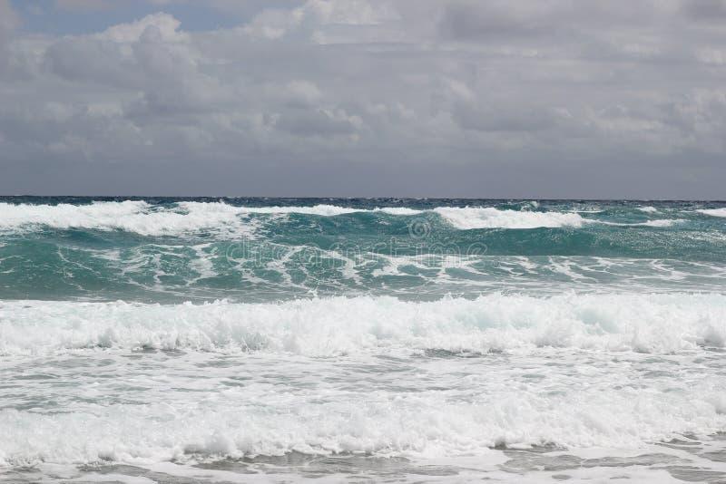 Costa de Florida imagem de stock