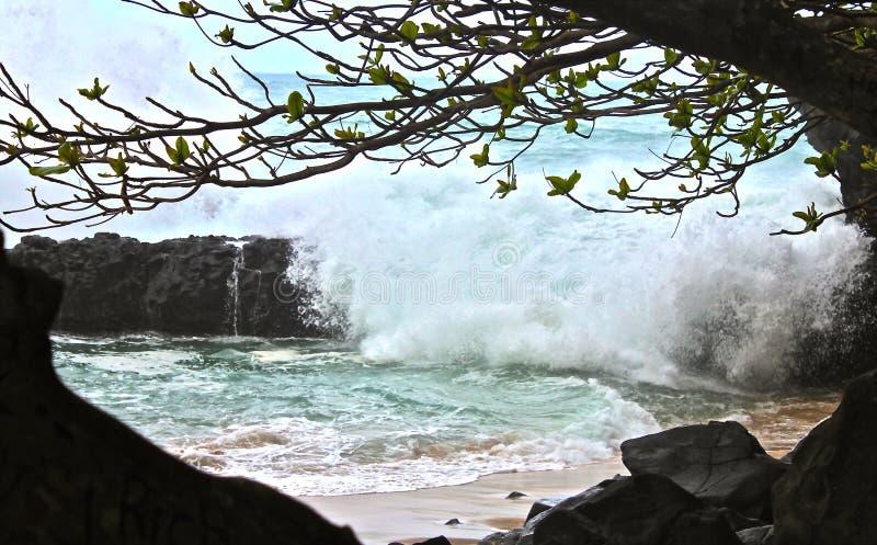 Costa de Kauai foto de stock