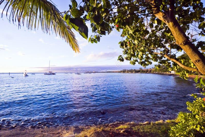 Costa de Lahaina, Maui imagens de stock royalty free