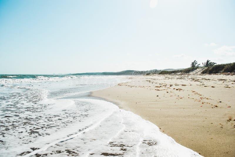 Costa de mar foto de stock royalty free