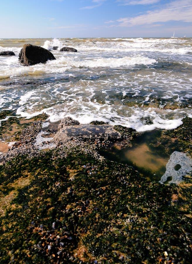 Costa de mar em Oostende imagem de stock royalty free
