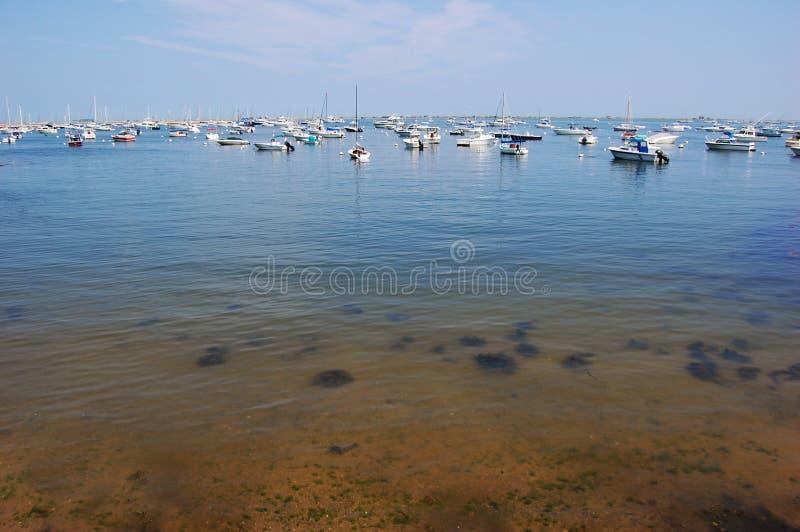 Costa de mar em Plymouth, Massachusetts foto de stock royalty free