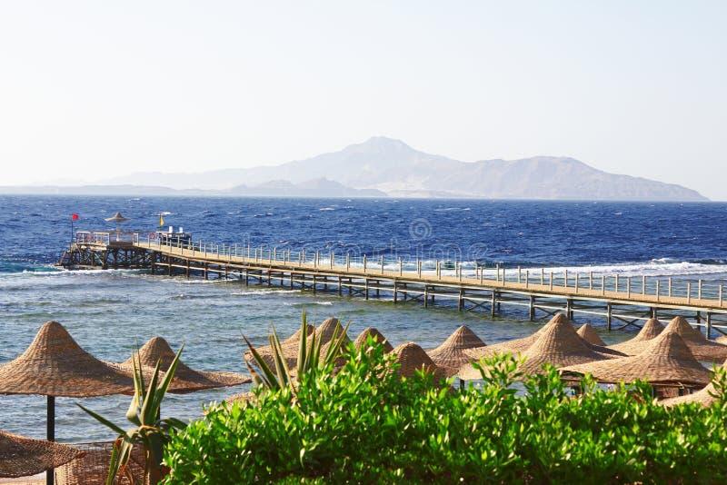 Costa de Mar Vermelho imagens de stock royalty free