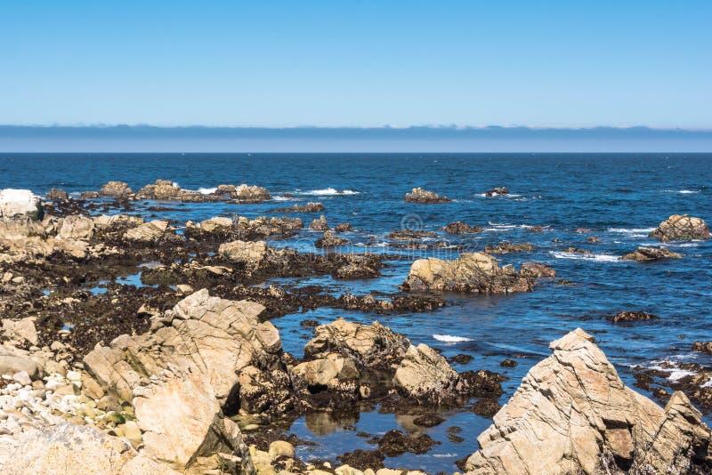Costa de Monterey, Califórnia imagem de stock royalty free