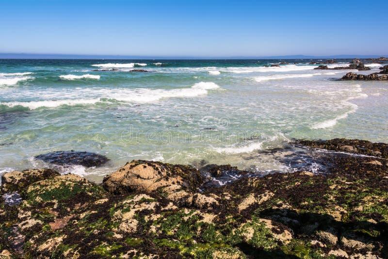 Costa de Monterey, Califórnia foto de stock royalty free