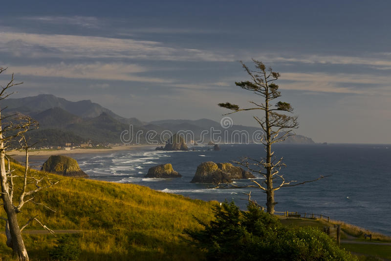 Costa de Oregon imagem de stock royalty free