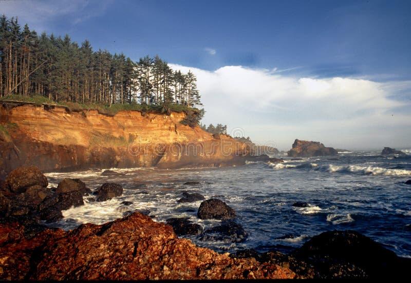 Costa de Oregon - louro da caldeira imagens de stock