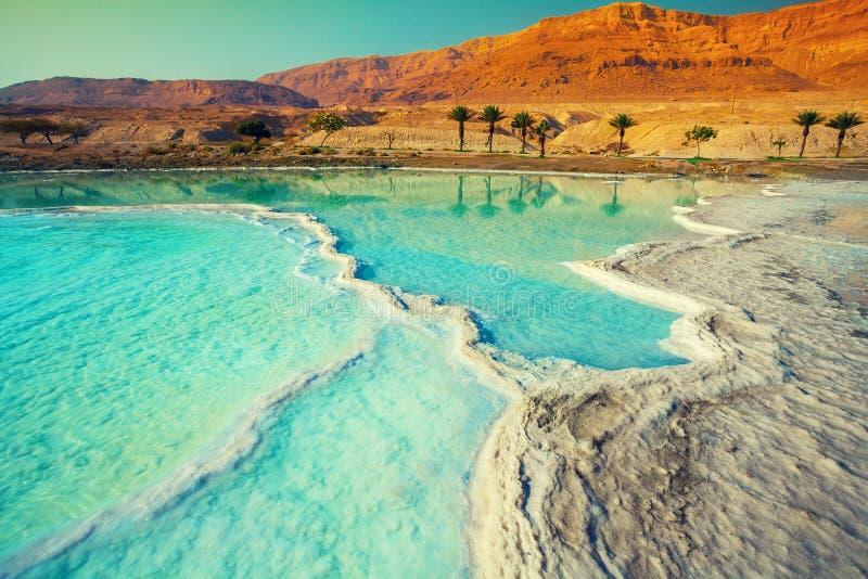 Costa de sal do Mar Morto imagens de stock royalty free