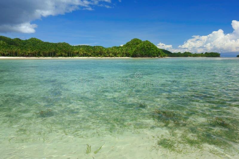 Download Costa de Siargao foto de stock. Imagem de praia, exotic - 107526508