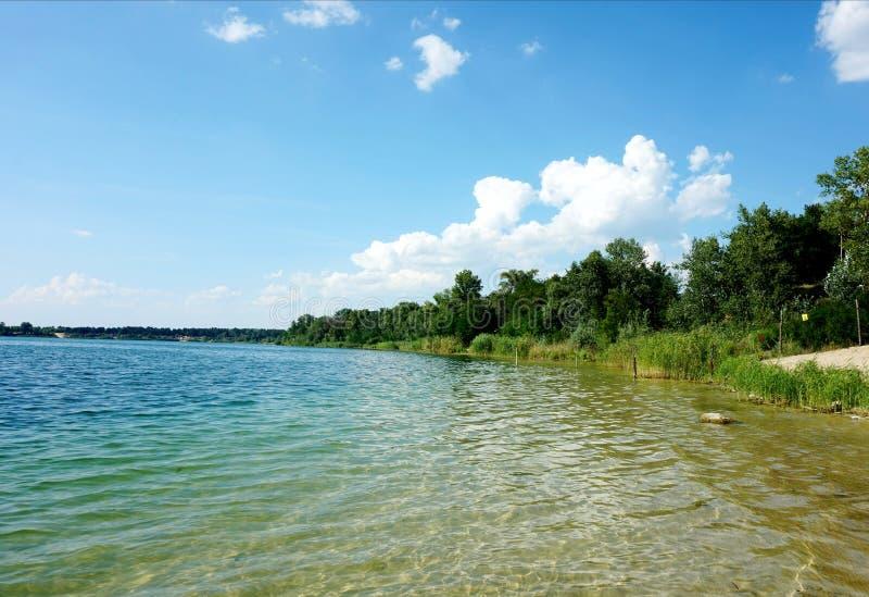 A costa de um rio ou de um lago em um dia ensolarado coberto de vegetação com os juncos foto de stock
