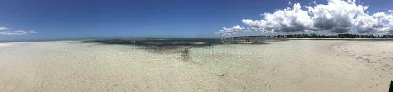 Costa de Zanzibar o céu imagem de stock royalty free
