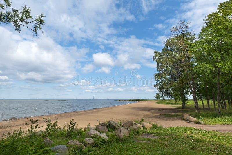 Costa del Golfo en verano, playa con las piedras de la arena, árboles en la orilla, Mar del Norte imagenes de archivo