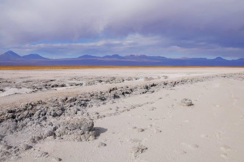 Costa del lago salado en el desierto de Atacama fotografía de archivo