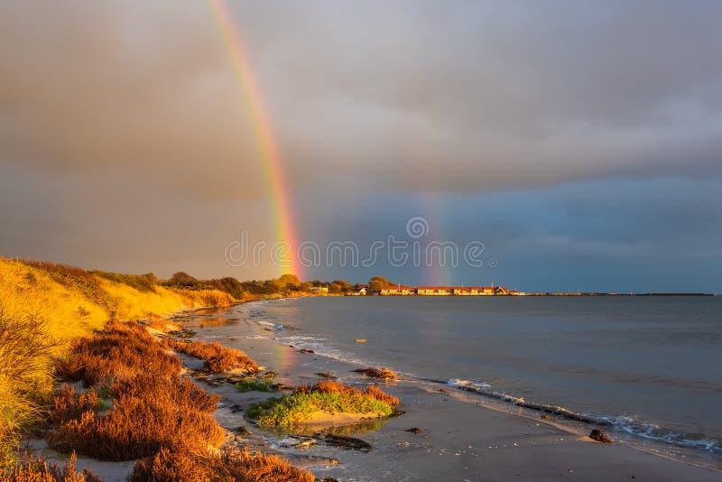 Costa del Mar Baltico sull'isola Moen in Danimarca fotografie stock libere da diritti