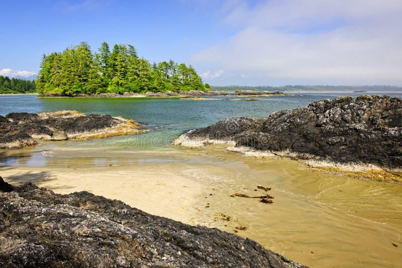 Costa del Océano Pacífico, isla de Vancouver, Canadá imagenes de archivo