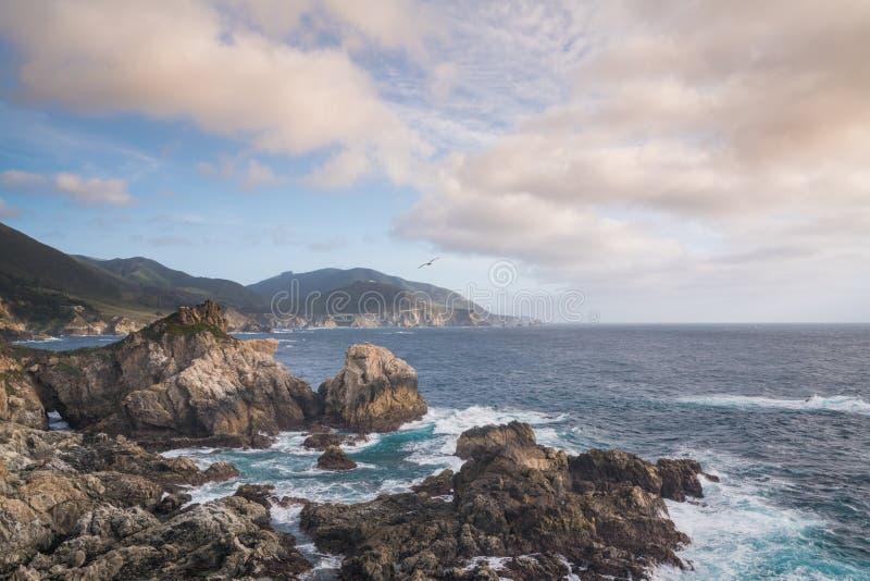 Costa del Pacífico en Big Sur, California imágenes de archivo libres de regalías