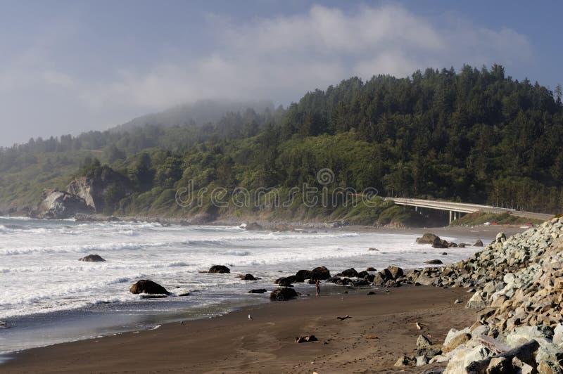 Costa del Pacifico fotografie stock