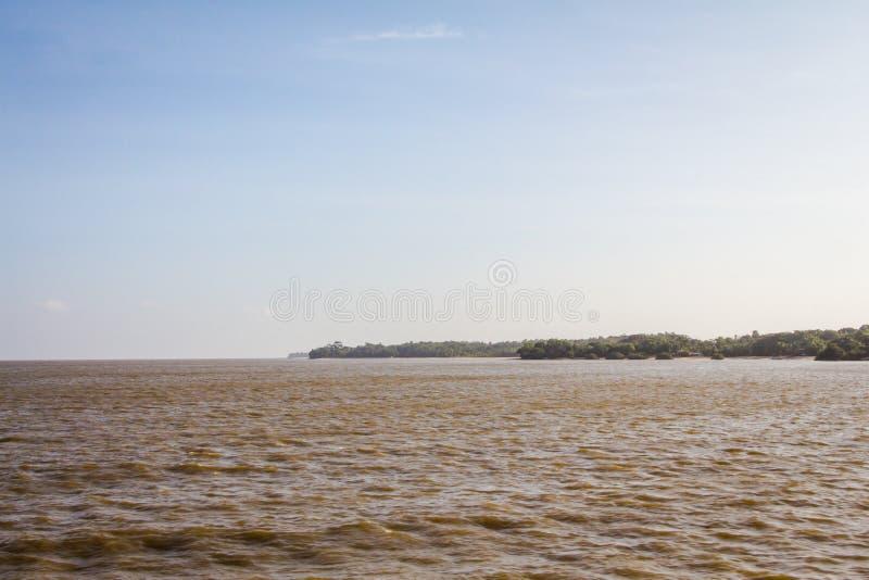 Costa del Rio delle Amazzoni fotografia stock libera da diritti