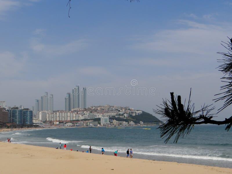 Costa di Busan, mare fotografia stock