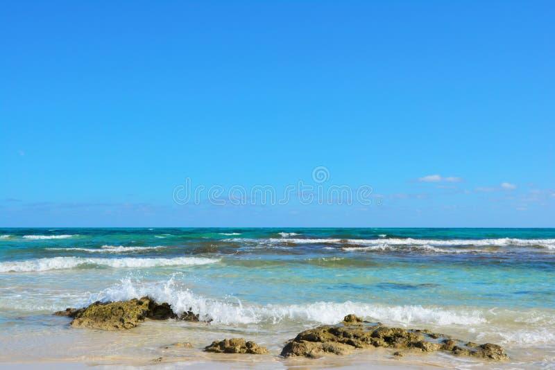 Costa di Corralejo Oceano e cielo blu verde smeraldo fotografia stock