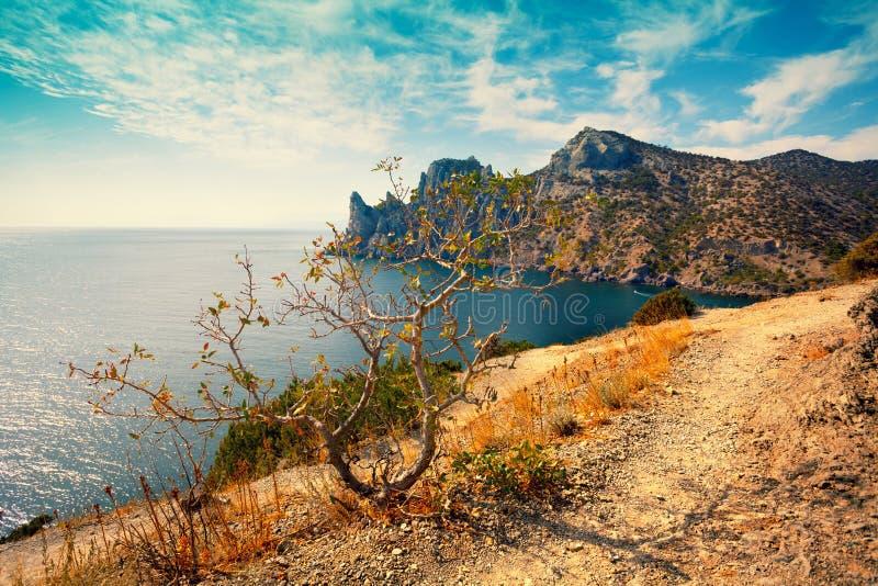 Costa di mare rocciosa fotografia stock libera da diritti