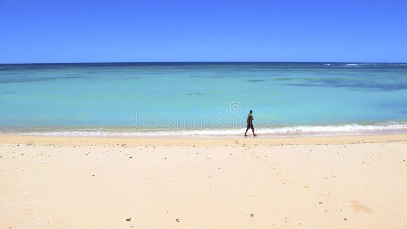 Costa di Ningaloo, Australia occidentale fotografia stock