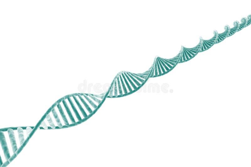 Costa do ADN ilustração do vetor