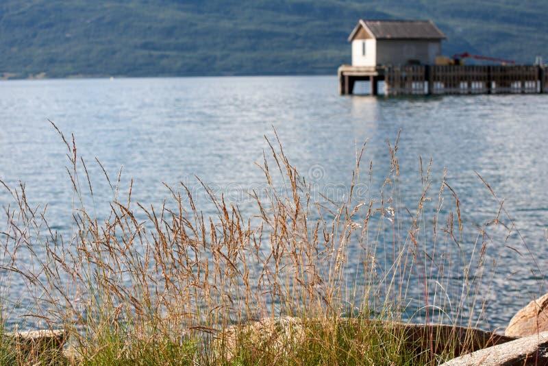 Costa do fiorde de Noruega fotografia de stock royalty free