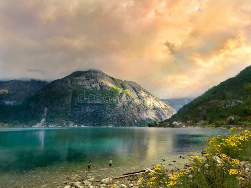 Costa do fiorde em Noruega no por do sol fotos de stock