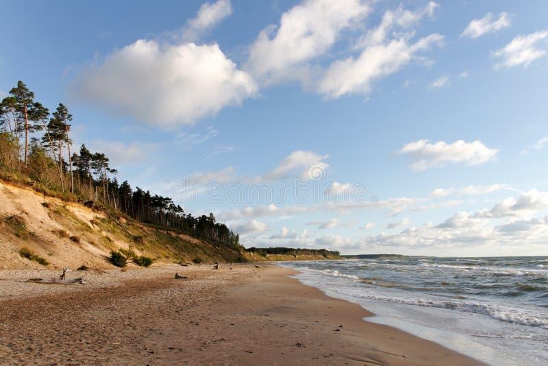 Costa do mar Báltico. imagens de stock