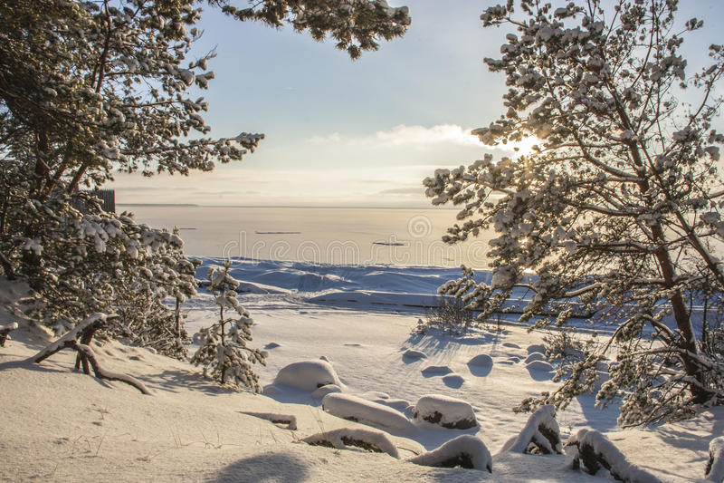 A costa do mar Báltico imagens de stock royalty free