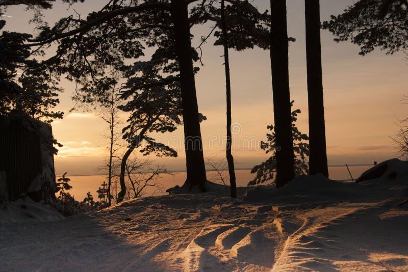 A costa do mar Báltico fotos de stock royalty free