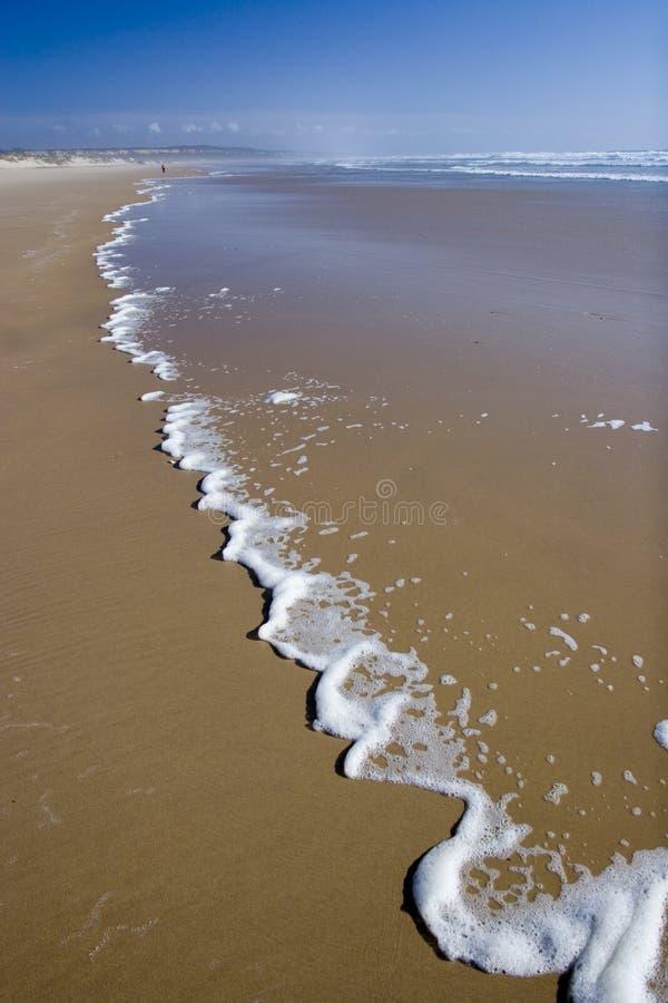 Costa do oceano fotos de stock