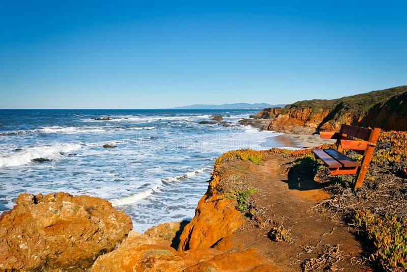 Costa do Oceano Pacífico imagem de stock royalty free
