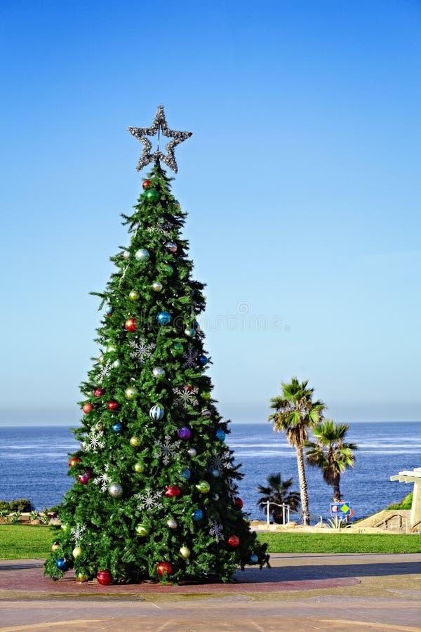 Costa do Pacífico de Califórnia da árvore de Natal do feriado imagens de stock royalty free