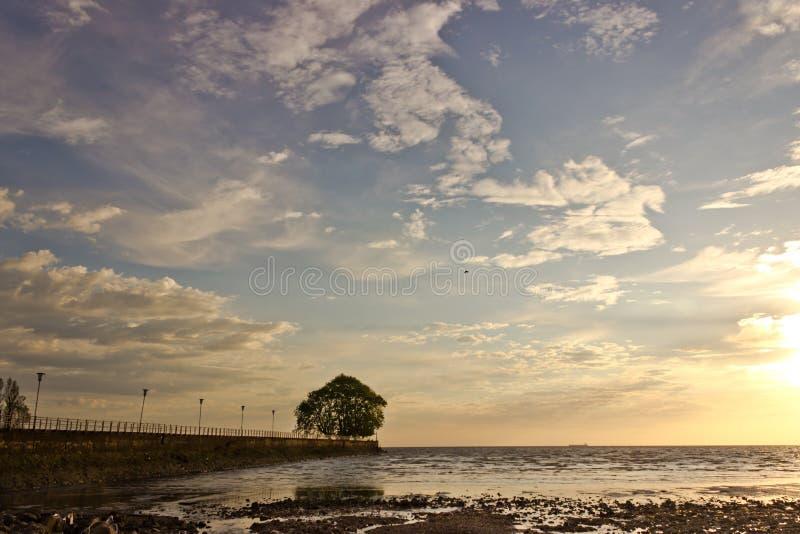Costa do rio fotografia de stock royalty free