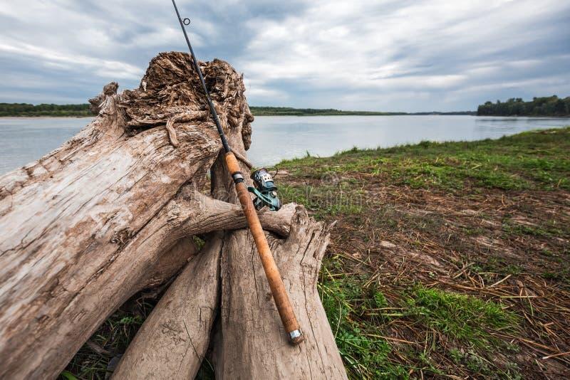 A costa do Rio Ob com senões Sibéria ocidental fotos de stock royalty free