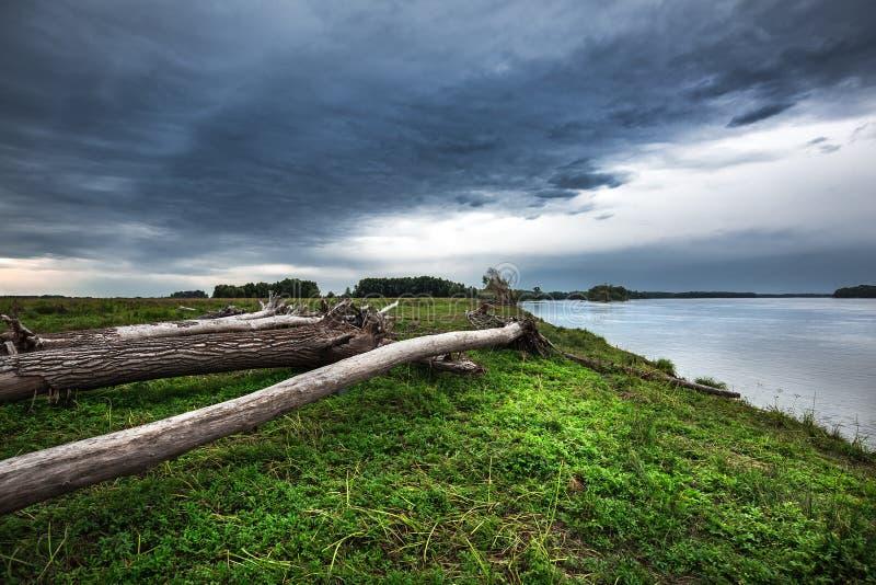 A costa do Rio Ob com senões Sibéria ocidental foto de stock