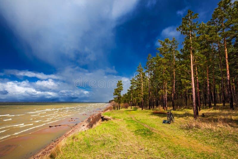 Costa do Rio Ob Região de Novosibirsk, Sibéria, Rússia imagens de stock
