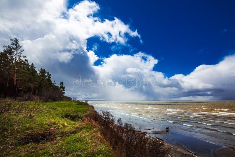 Costa do Rio Ob Região de Novosibirsk, Sibéria, Rússia fotografia de stock royalty free