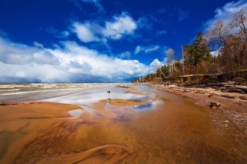 Costa do Rio Ob Região de Novosibirsk, Sibéria, Rússia imagem de stock