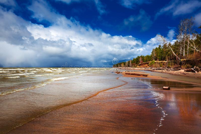 Costa do Rio Ob Região de Novosibirsk, Sibéria, Rússia foto de stock royalty free