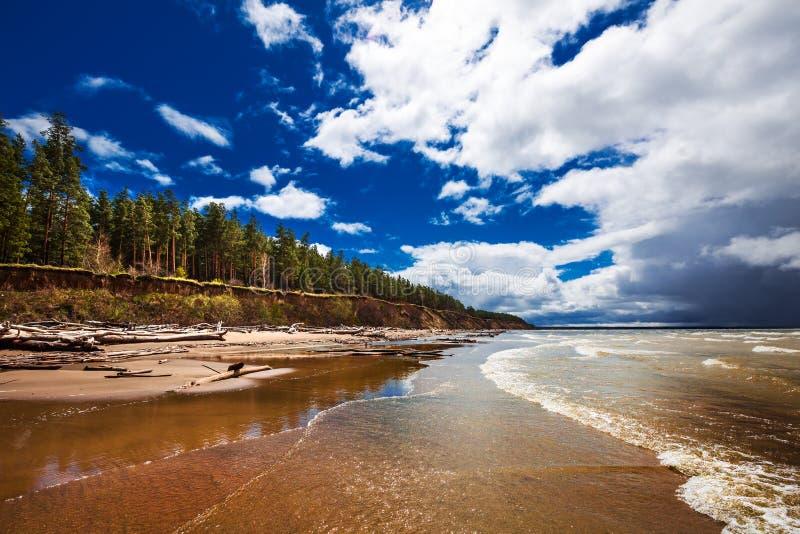 Costa do Rio Ob Região de Novosibirsk, Sibéria, Rússia fotografia de stock