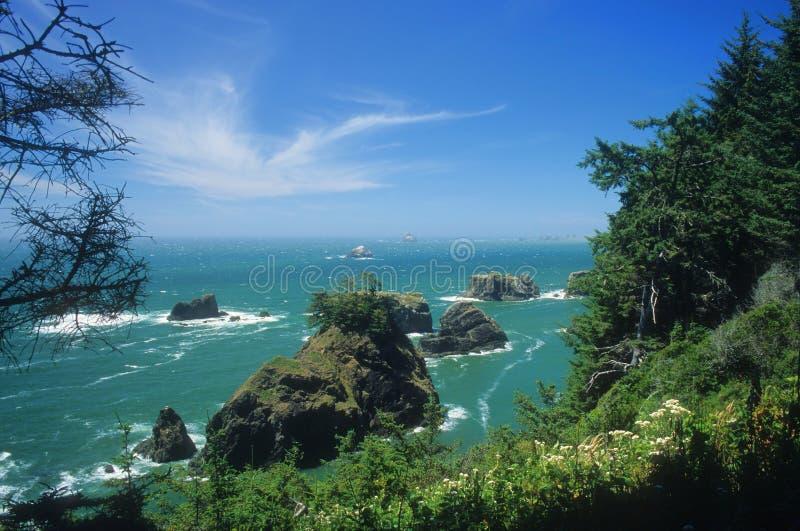 Costa do sul de Oregon fotografia de stock